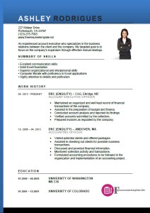account executive resume template 2