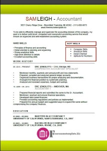 Accountant Resume Template 2