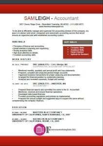 Accountant Resume Template 3