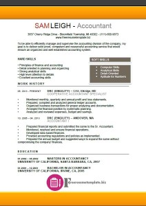Accountant Resume Template 4