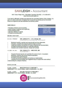 Accountant Resume Template 5