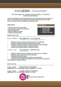 Accountant Resume Template 6