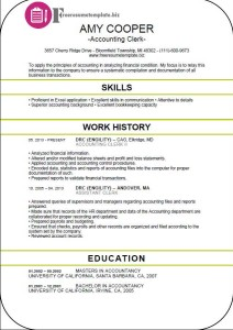 Accounting Clerk Resume Template 5