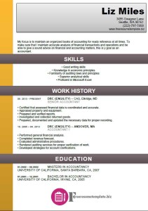 Accounting Resume Template 3