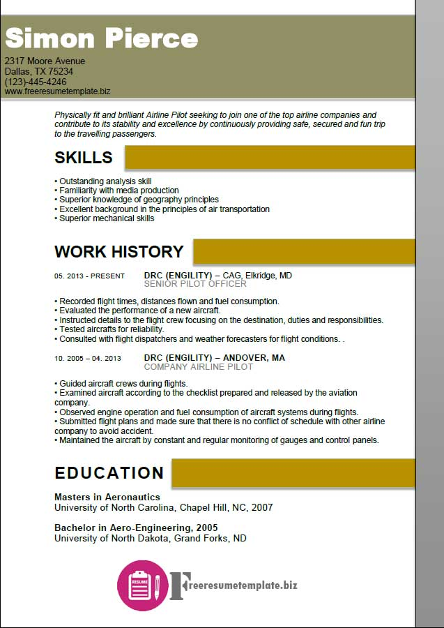 Aircraft Pilot Resume Template Aviation Maintenance Technician Sample  Mechanic Professional ...  Aviation Resume Examples