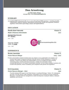 free resume template 27