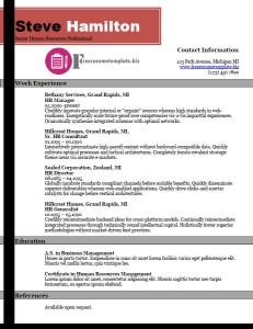 free resume template 31