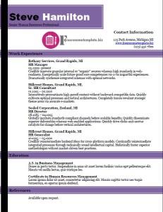 free resume template 33