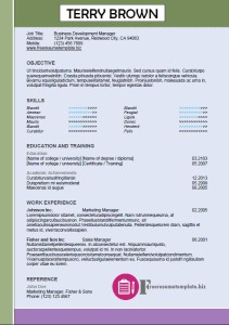 free resume template 49