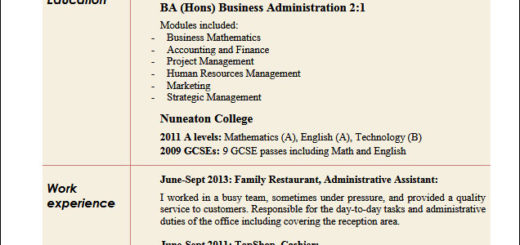 business administration resume templates